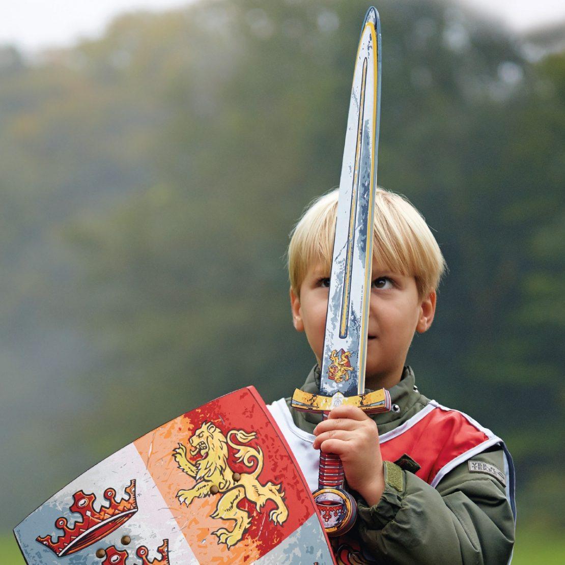 Liontouch Sword
