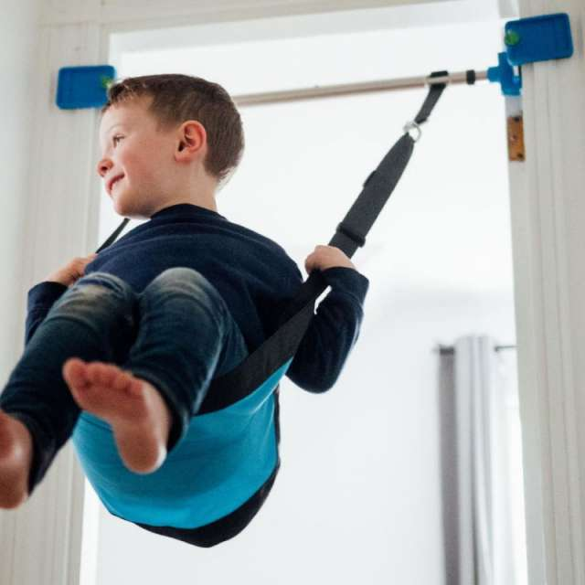 Kidtrix Doorway Swing