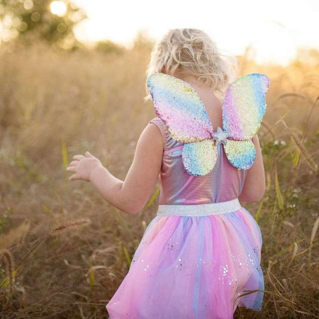 Rainbow Sequins Skirt, Wings, & Wand