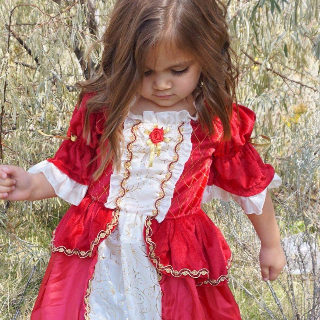 Little Adventures Winter Beauty Dress
