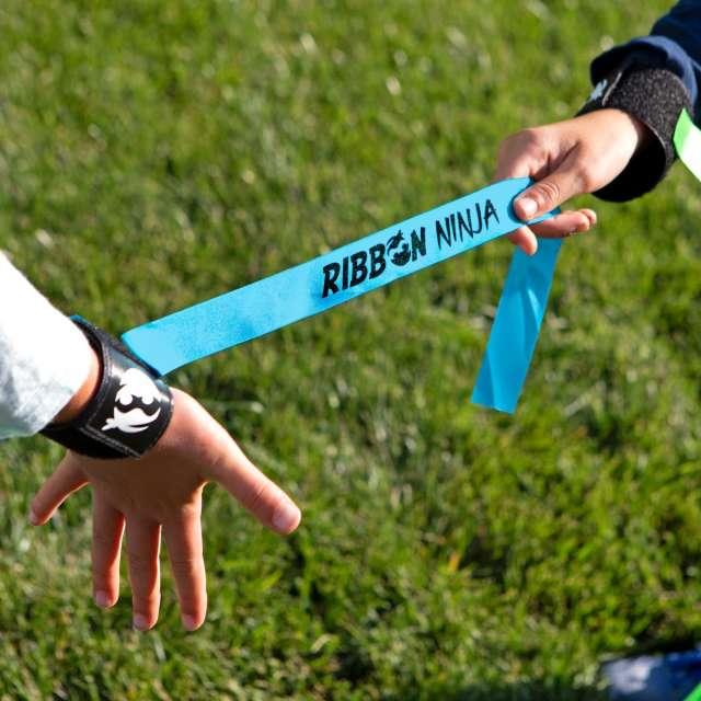 Ribbon Ninja