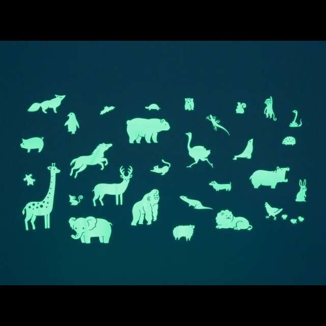 GloPlay Animals