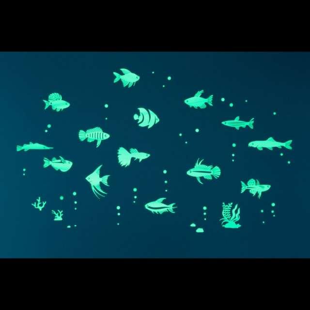 GloPlay Tropical Fish