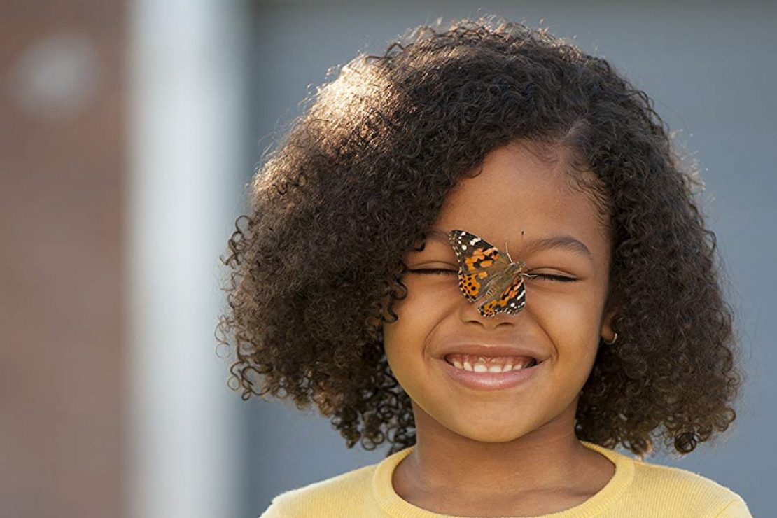 Insect-lore-butterfly-garden-girl