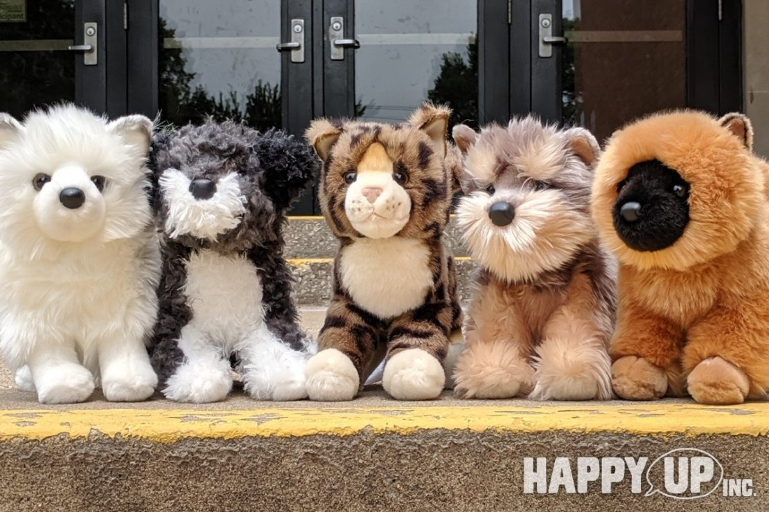 Douglas Plush Puppies and Kitten are ready for school!