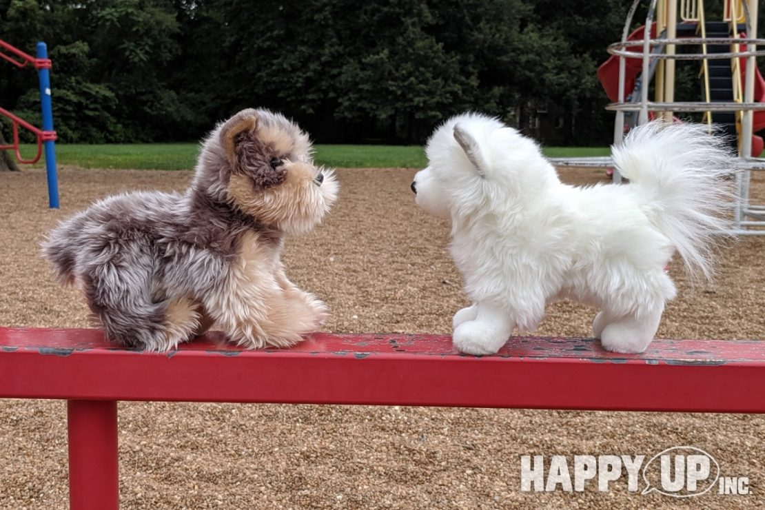 Douglas Plush Puppies becoming friends