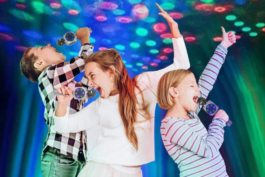 Sing Along Karaoke Mics