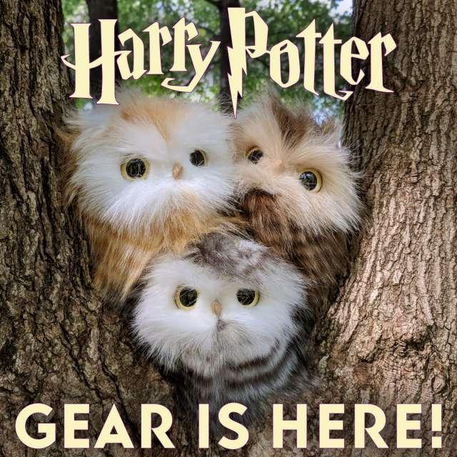 Harry Potter Gear is Here Owlets