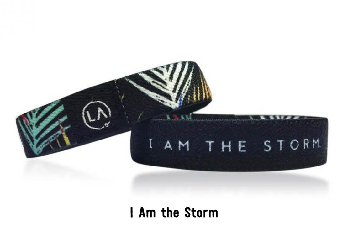 Reassure Band: I Am The Storm.