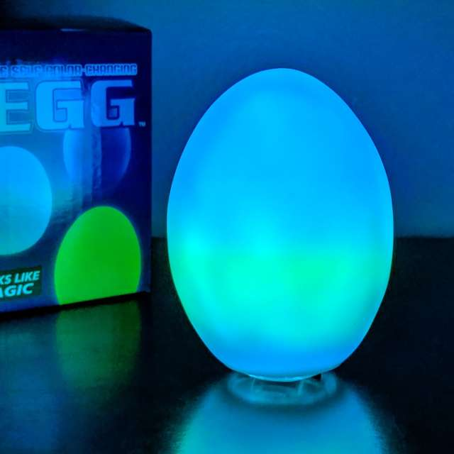 Color Changing Egg Light