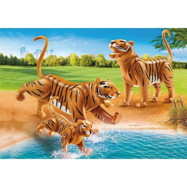 Tigers with Cub