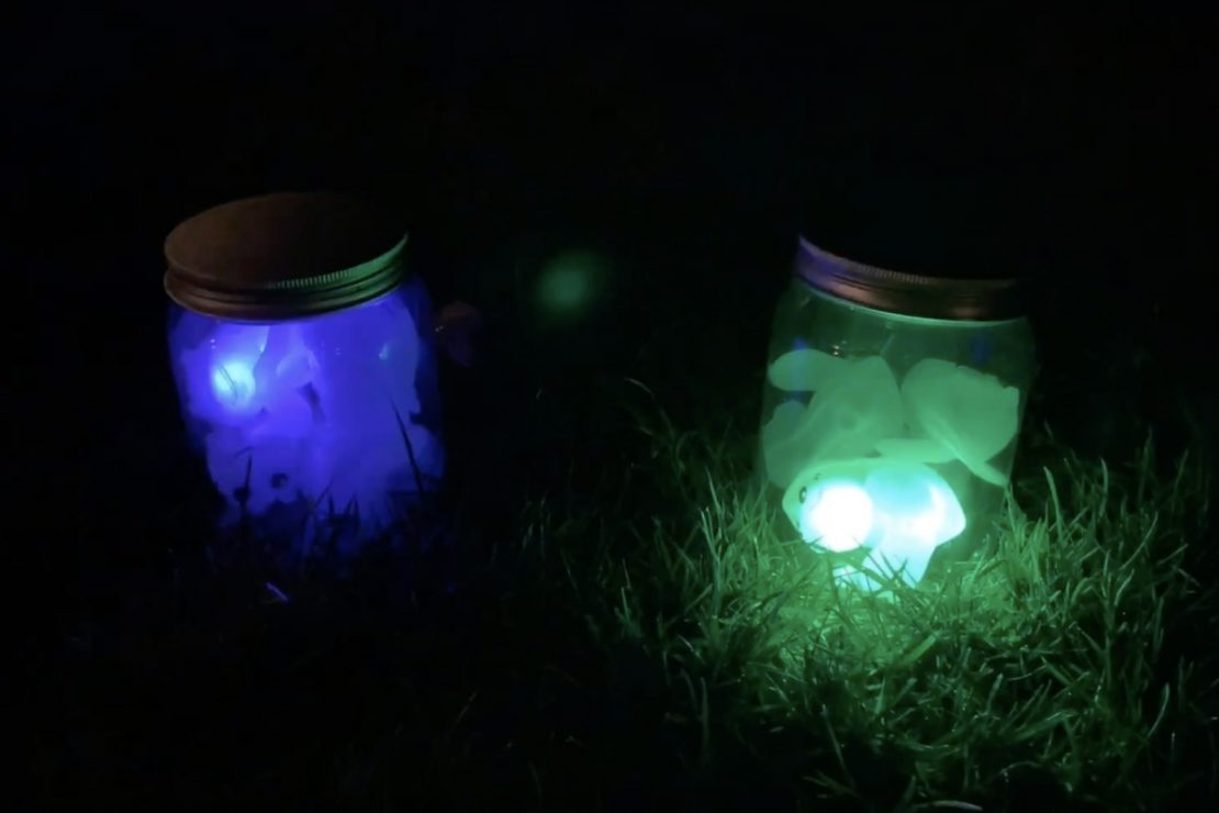 Chasing Fireflies Game