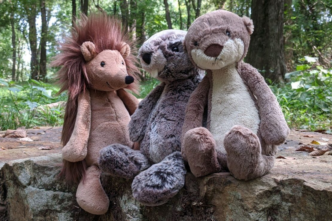 Bashful Hedgehog, Beaver, and Otter from Jellycat