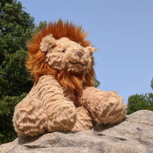 Fuddlewuddle Lion from Jellycat