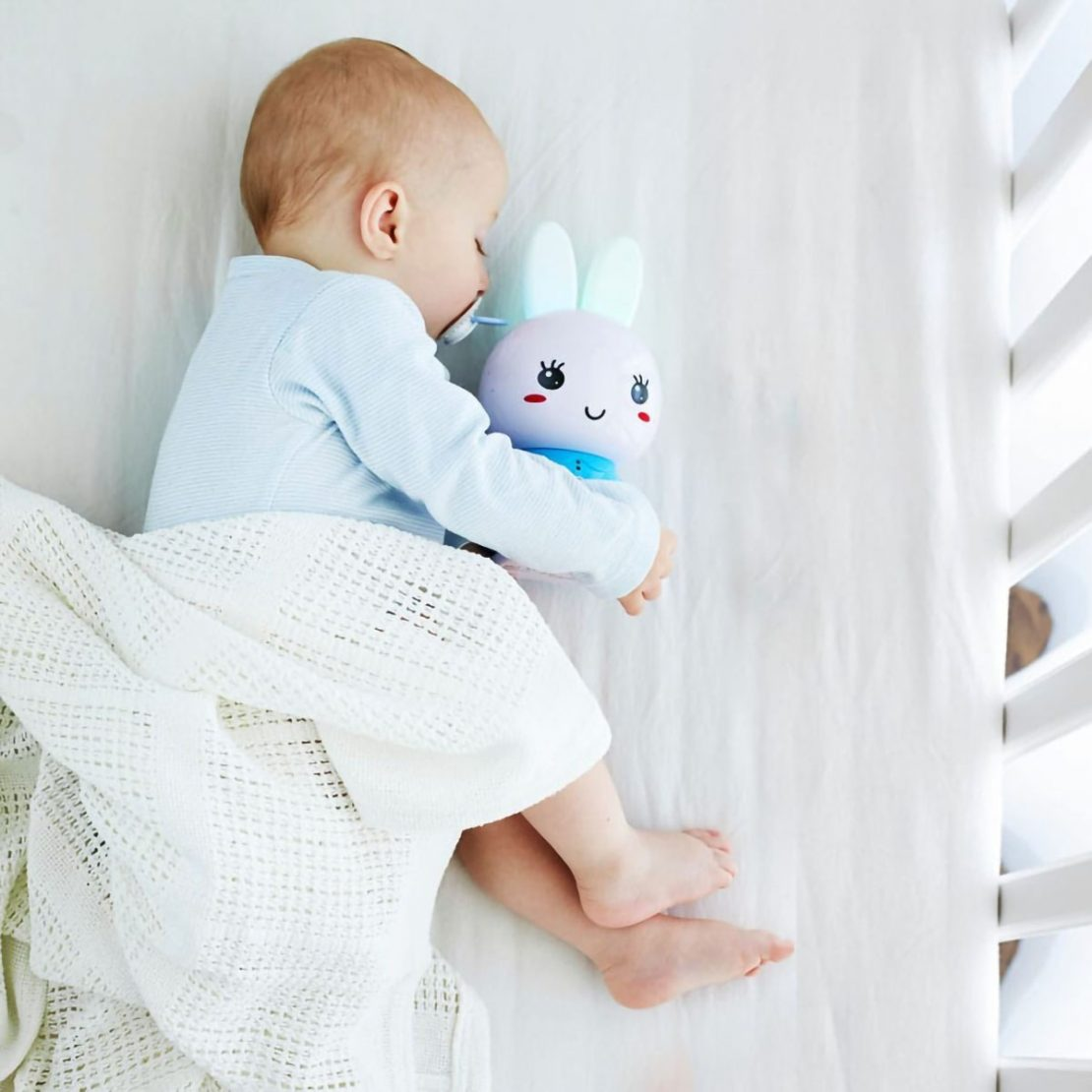 Honey Bunny with Baby