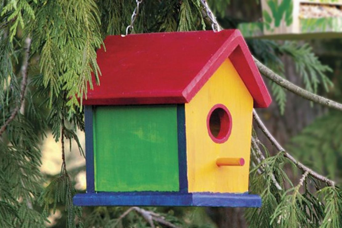 Beetle & Bee Garden Build a Bird Bungalow