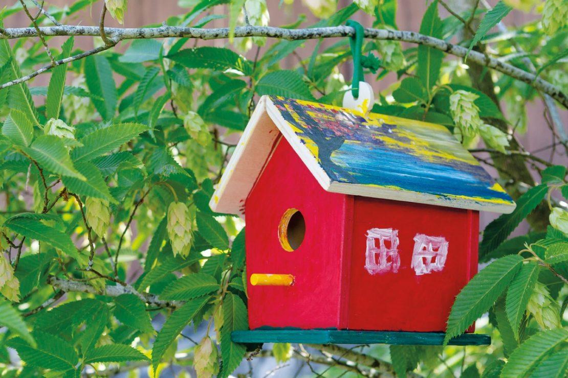 Beetle & Bee Garden Build & Paint a Birdie B&B