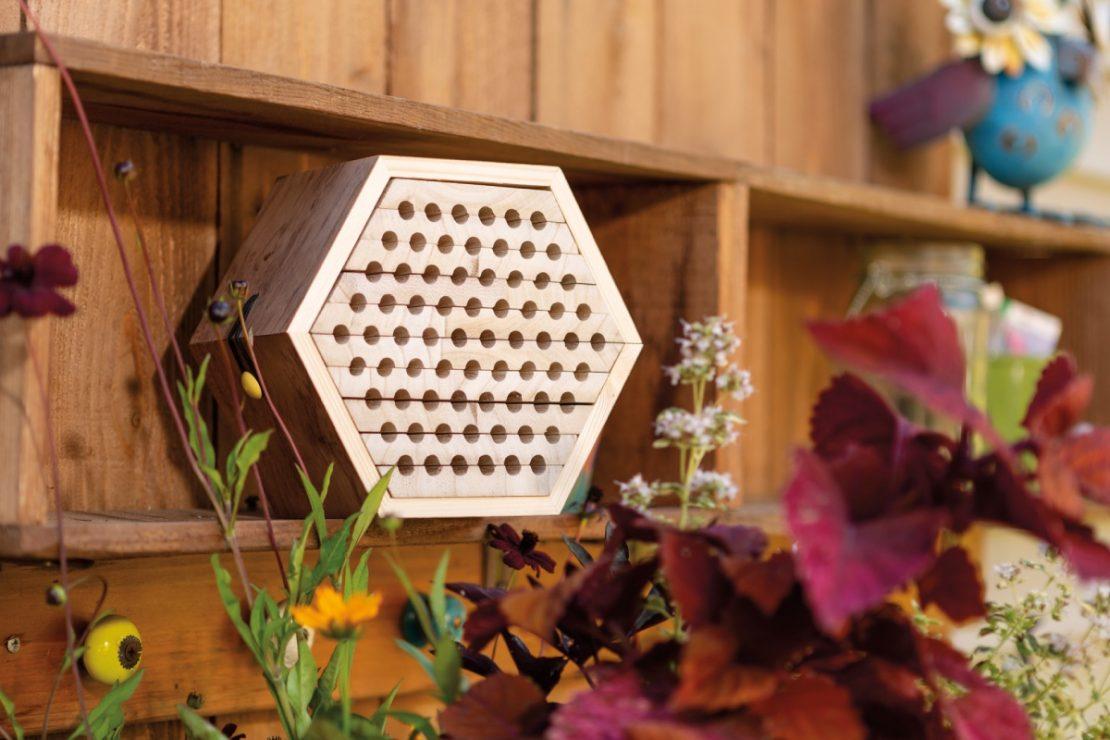 Beetle & Bee Garden Solitary Bee Habitat