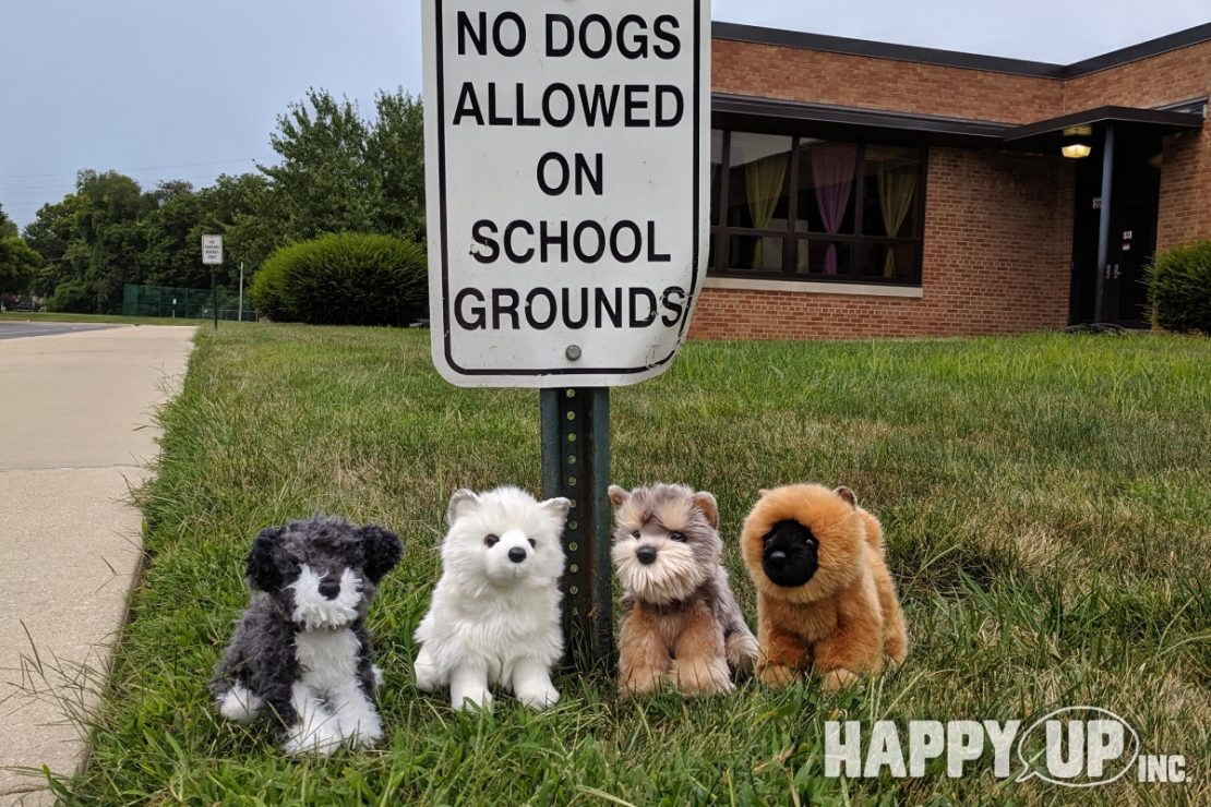 """""""No Dogs Allowed on School Grounds"""", but plush puppers are!"""