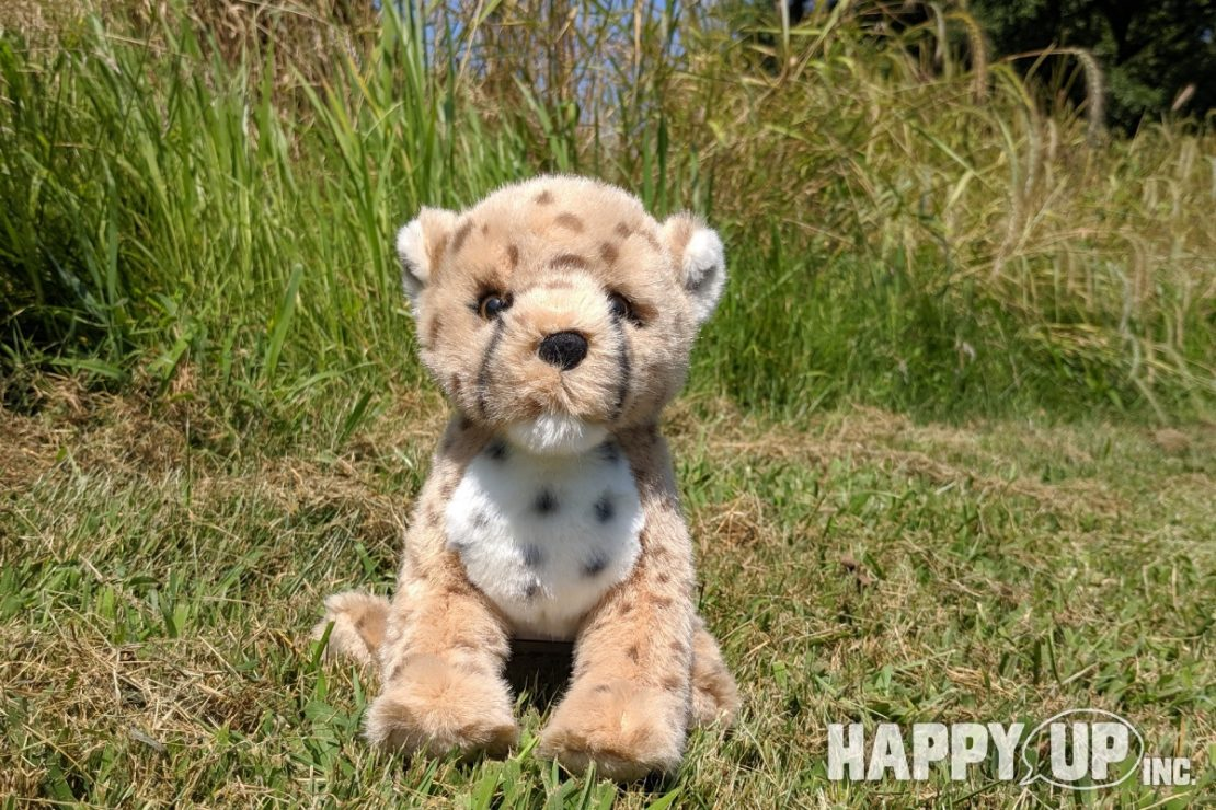 Chillin the Cheetah Cub from Douglas