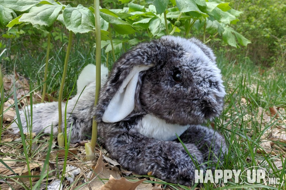 Rory the DLux Floppy Bunny from Douglas