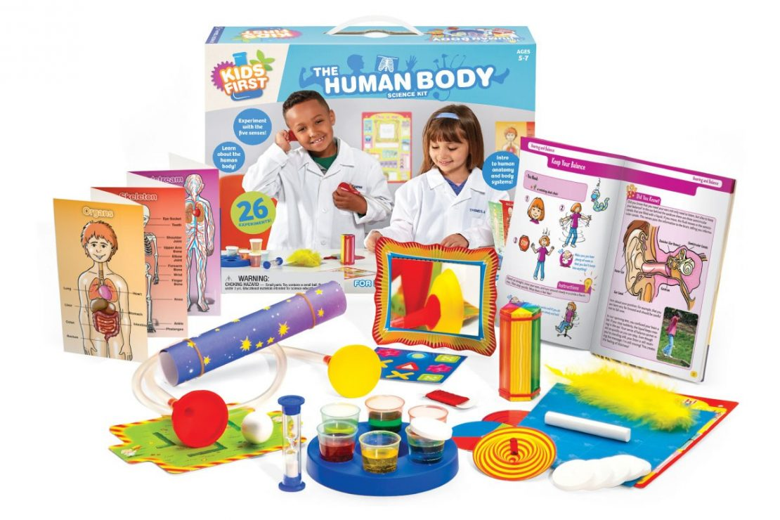Kids First Human Body Science Kit from Thames & Kosmos