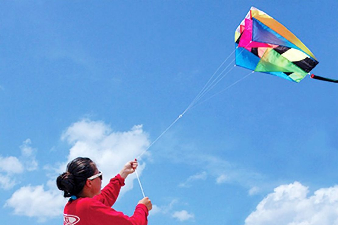 Neon Parafoil Kite from Premiere Kites