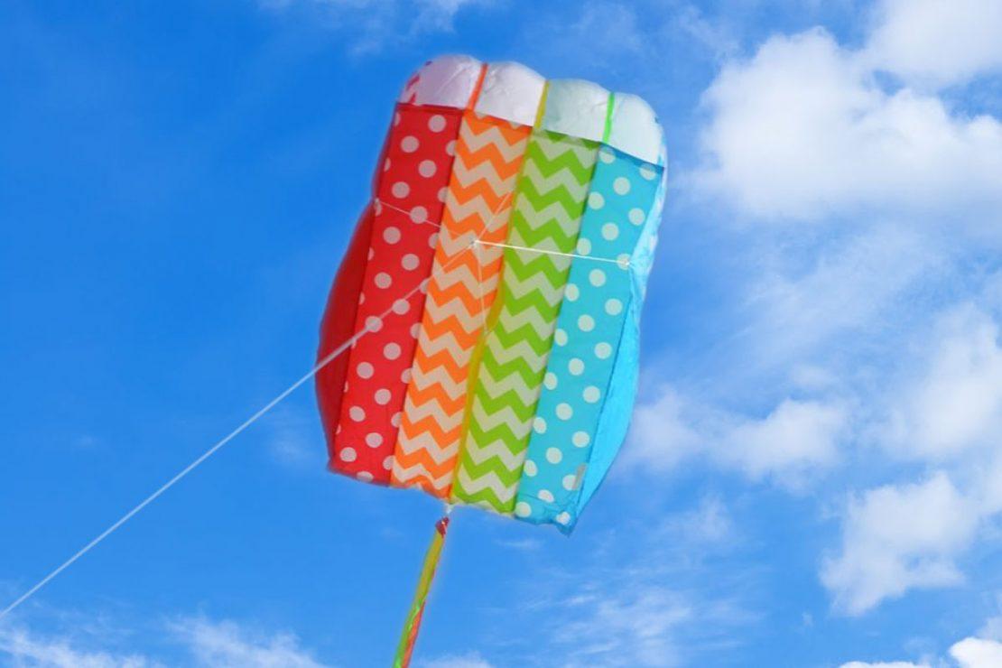 Whimsy Parafoil Kite from Premiere Kites