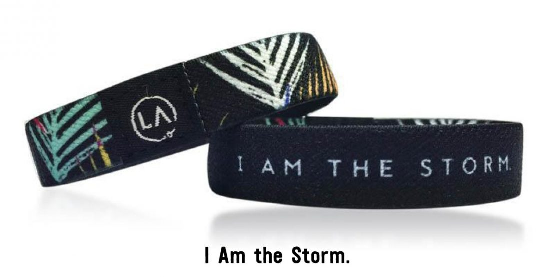 Reassure: I Am The Storm
