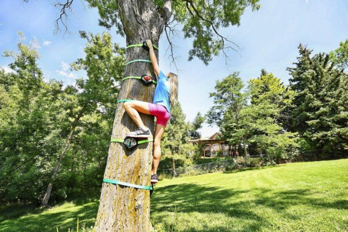 Slackers Tree Climbers