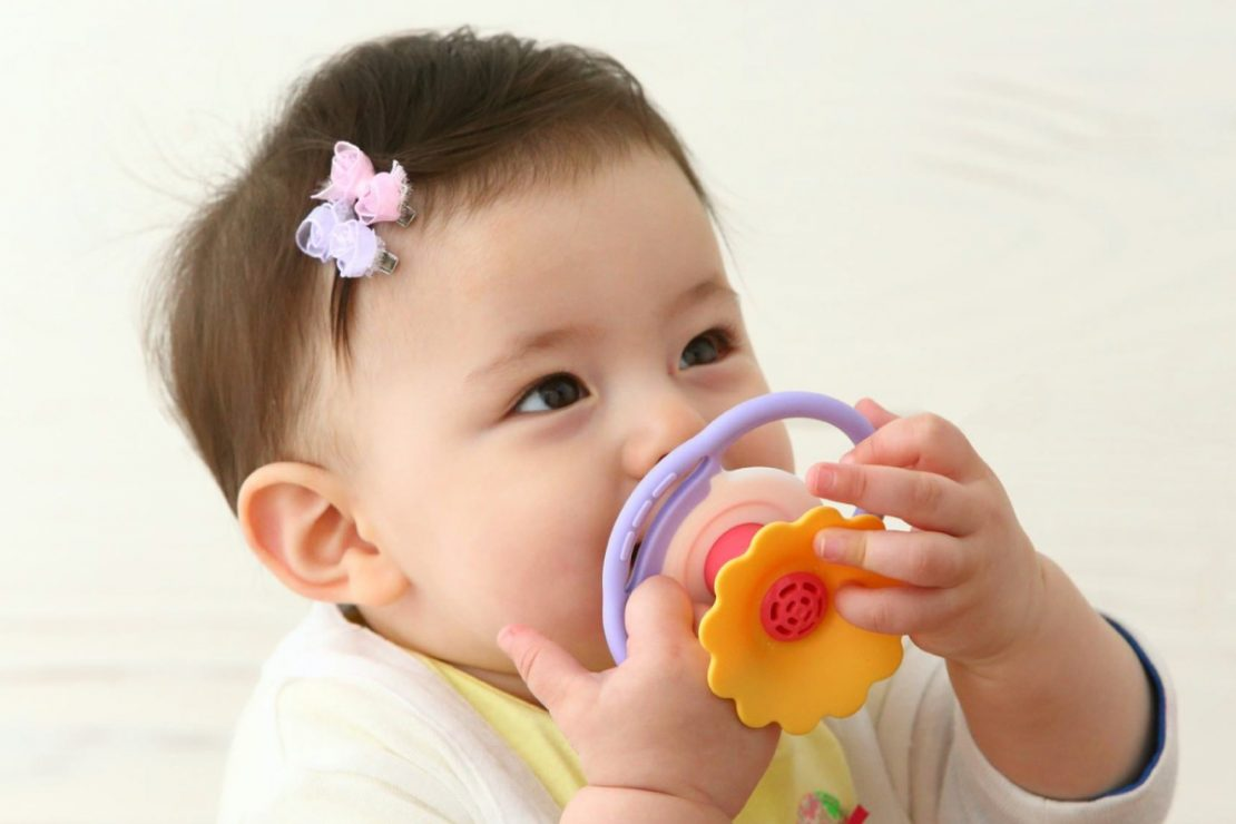 Toyroyal Floral Whistle Teether
