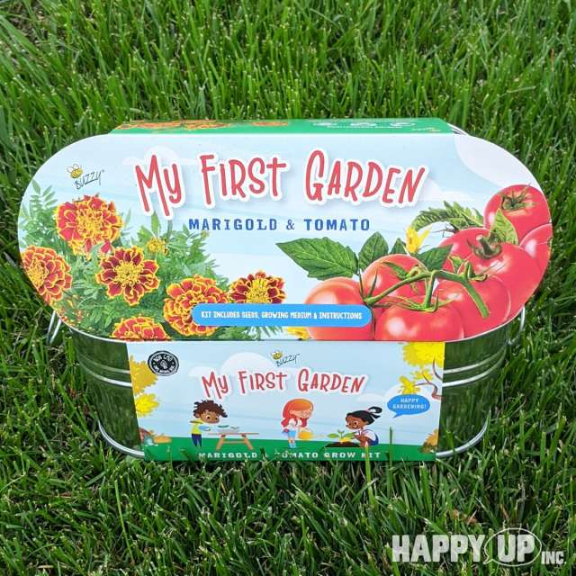 Buzzy My My First Garden Marigold & Tomato Windowsill Grow Kit