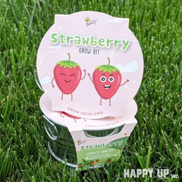 Buzzy Strawberry Grow Kit