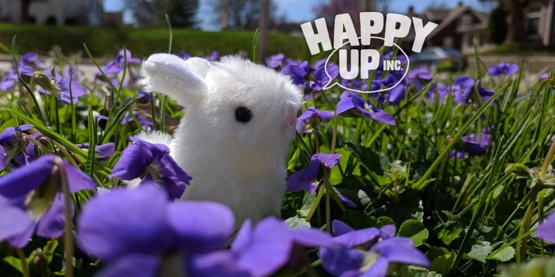 Bunny-violets-04-16-19